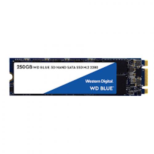 WD 250GB M.2 BLUE SATA SSD