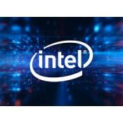 Intel (101)