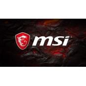 MSI (6)